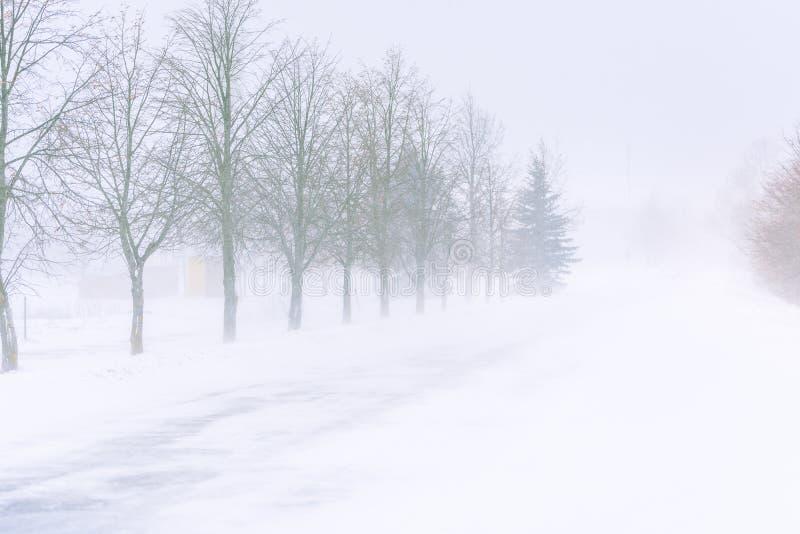 Шторм снега на шоссе в дневном свете стоковое фото rf