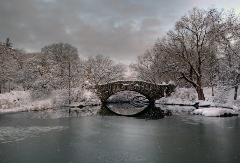 шторм снежка gapstow brdige стоковые изображения