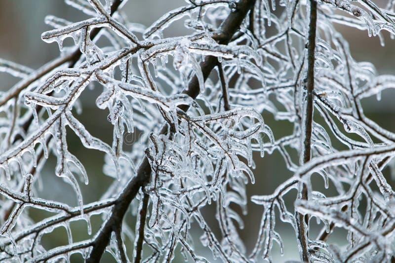 Шторм льда стоковые изображения