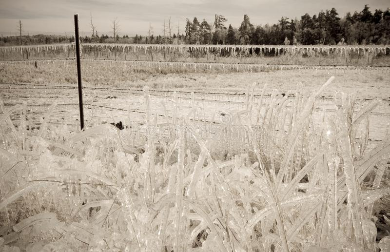 Шторм льда стоковые фото