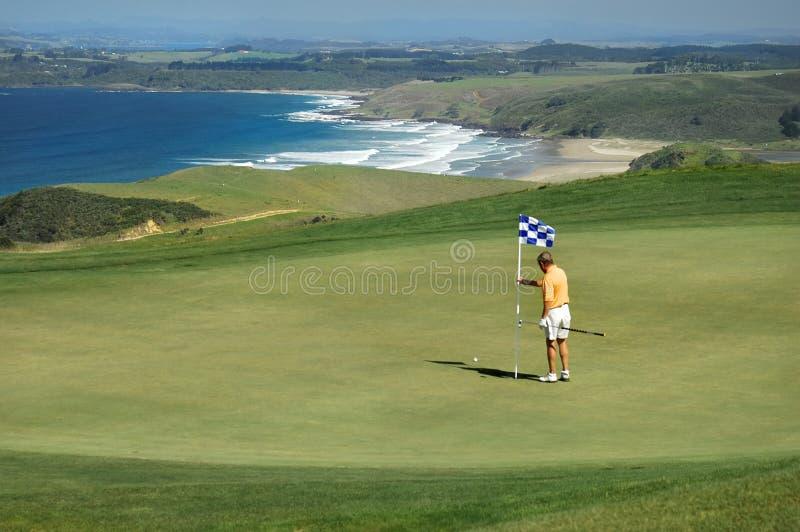 штырь гольфа извлекает стоковая фотография