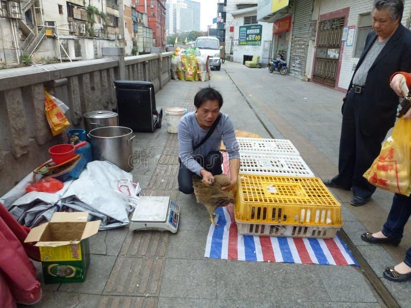 Шэньчжэнь, Китай: под открытым небом стойл цыпленка стоковая фотография