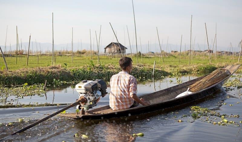 Шлюпка и плавая сады на озере Inle Мьянме стоковое изображение rf
