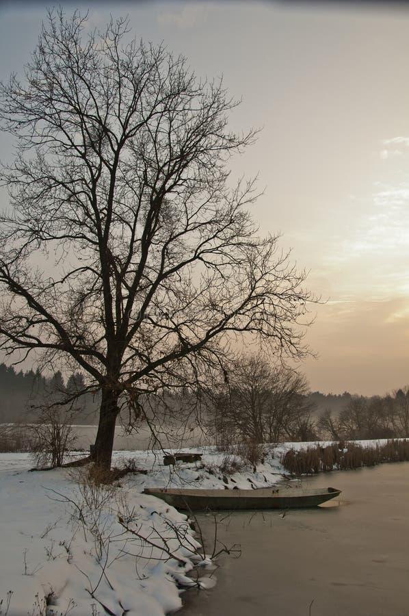 Шлюпка под деревом на озере зимы на заходе солнца стоковая фотография