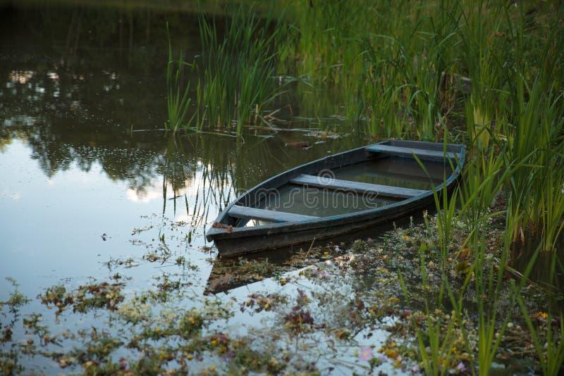 Шлюпка причалила на озере между тростниками стоковое фото rf