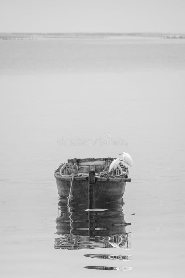 Шлюпка Egret и древесины стоковые изображения rf