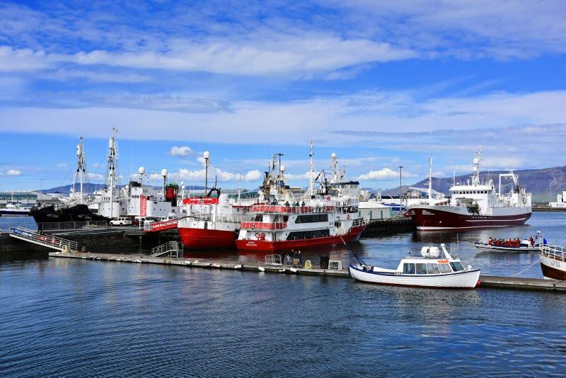 Шлюпки кита наблюдая стоковая фотография rf