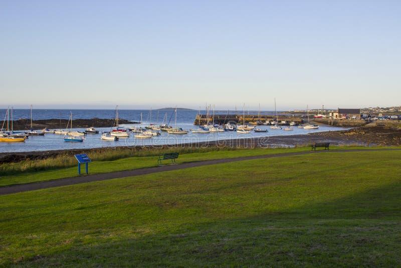 Шлюпки на их зачаливаниях около острова куколя в естественной приливной гавани на Groomsport в Co вниз, Северная Ирландия с Белфа стоковое фото rf