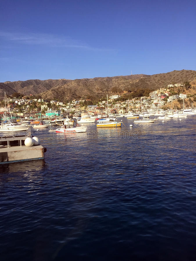 Шлюпки острова Каталины стоковые фото