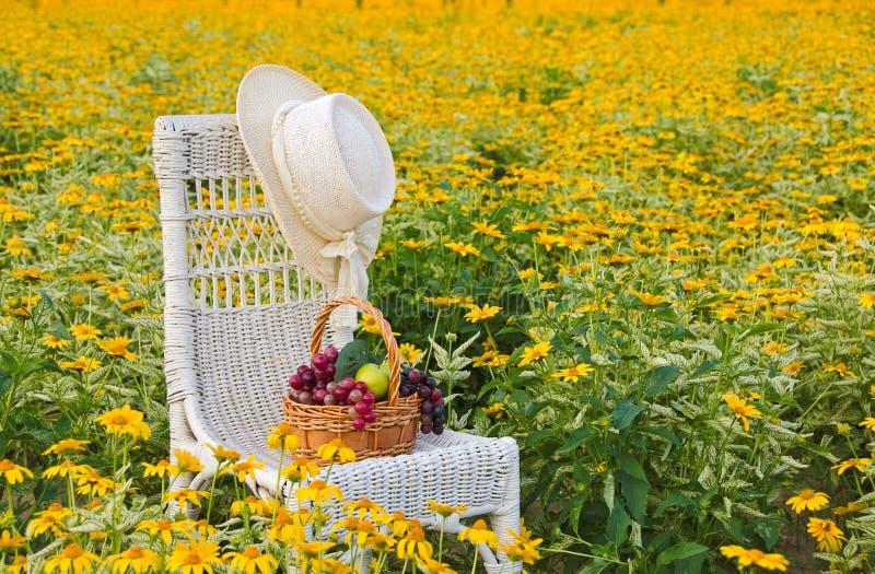 Шляпа на стуле в желтых маргаритках стоковая фотография rf