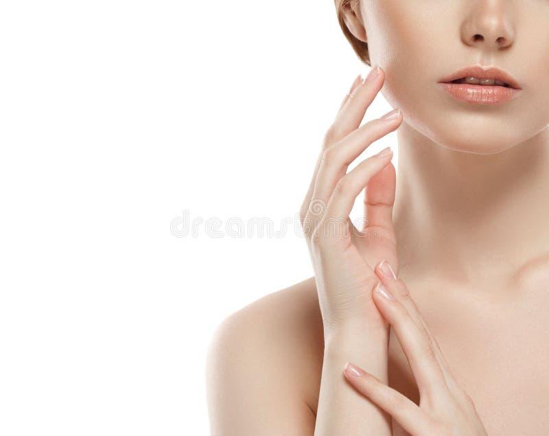Щеки подбородка носа губ плеча шеи женщины стоковая фотография