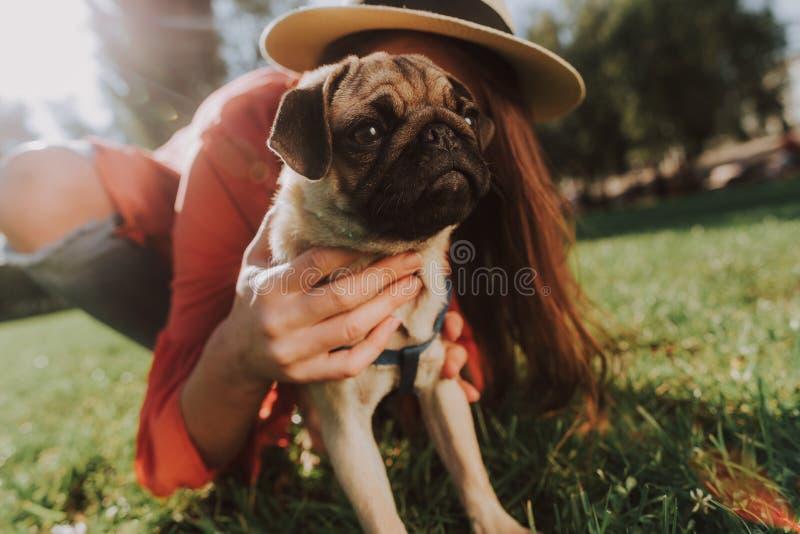 Щенок мопса сидит на зеленой траве с его владельцем стоковое фото rf