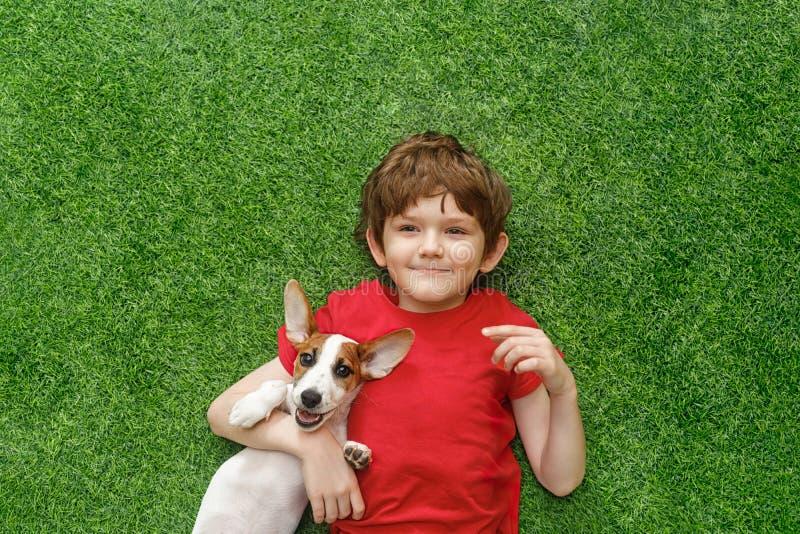 Щенок обнимать ребенка поднимает Рассела и лежать домкратом на зеленом ковре стоковая фотография rf