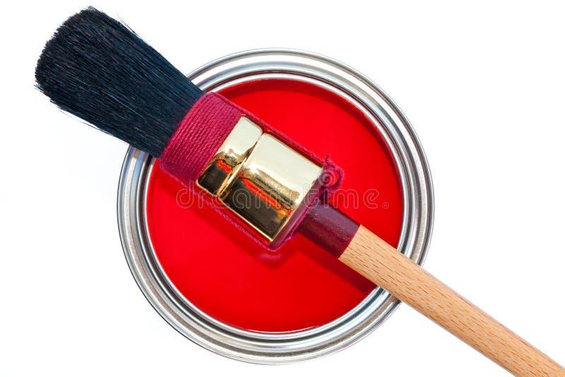 щетка может изолированная белизна краски стоковые фотографии rf