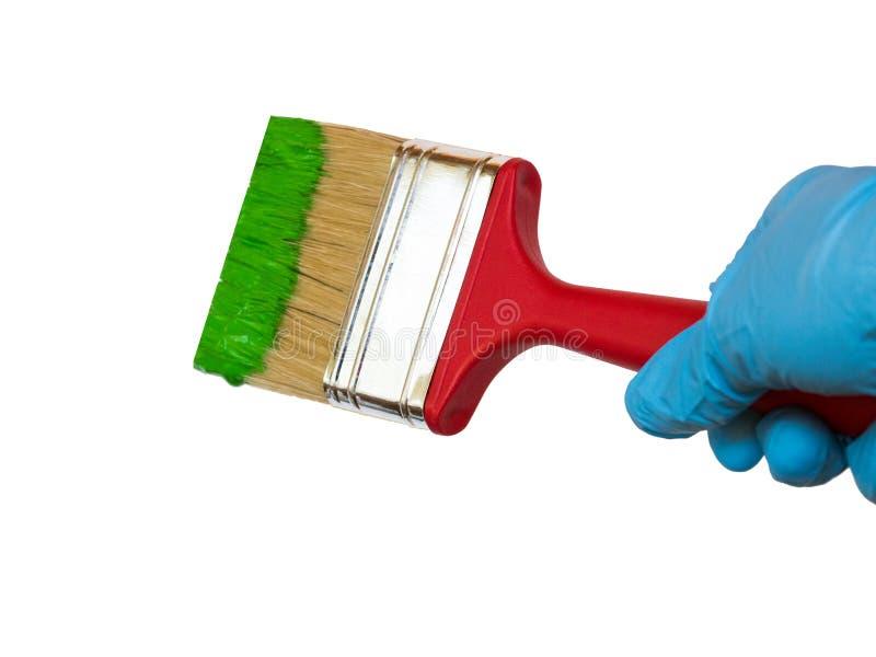 Щетка удерживания руки с деревянной ручкой, которая окунута в зеленой краске, стоковые изображения rf