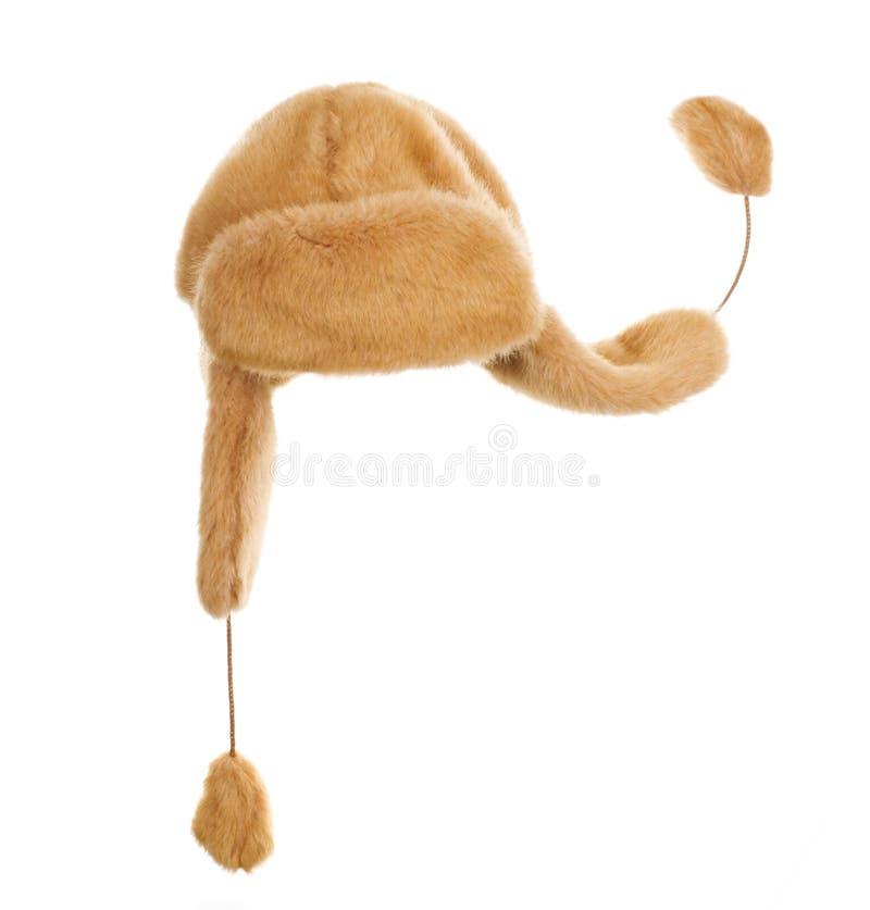 щитки уха крышки стоковое изображение