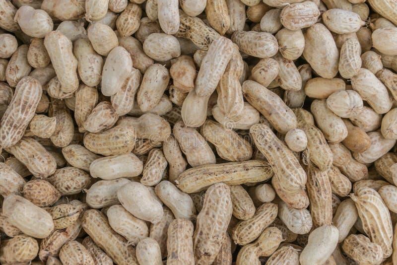 ые арахисы стоковое изображение