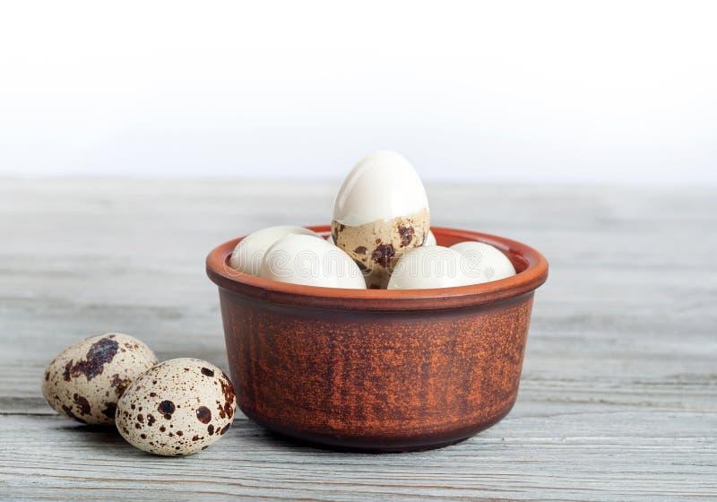 ые триперстки яичек стоковые фотографии rf
