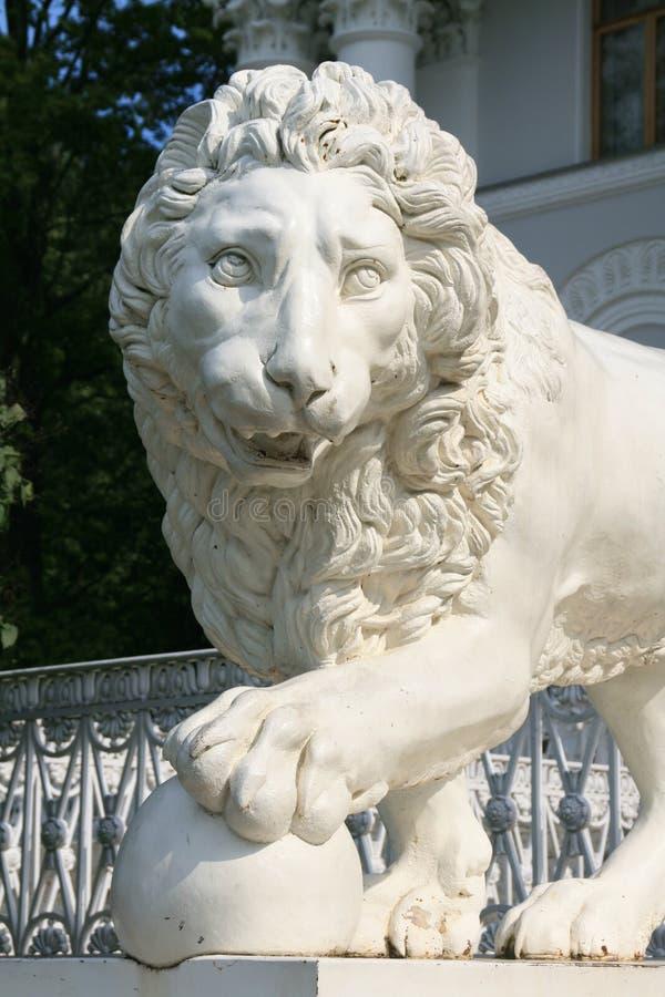 львев стоковые фотографии rf