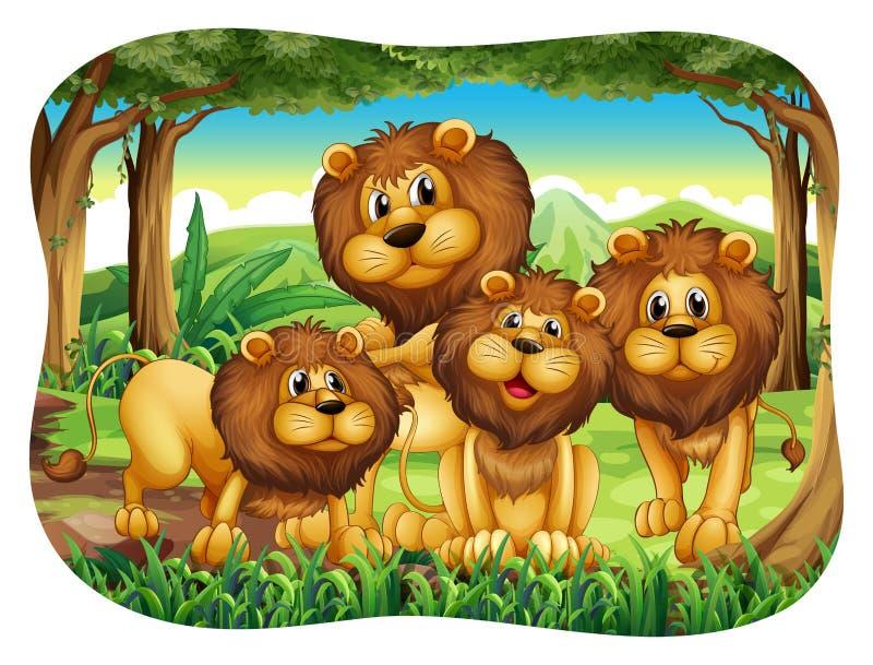 львы бесплатная иллюстрация