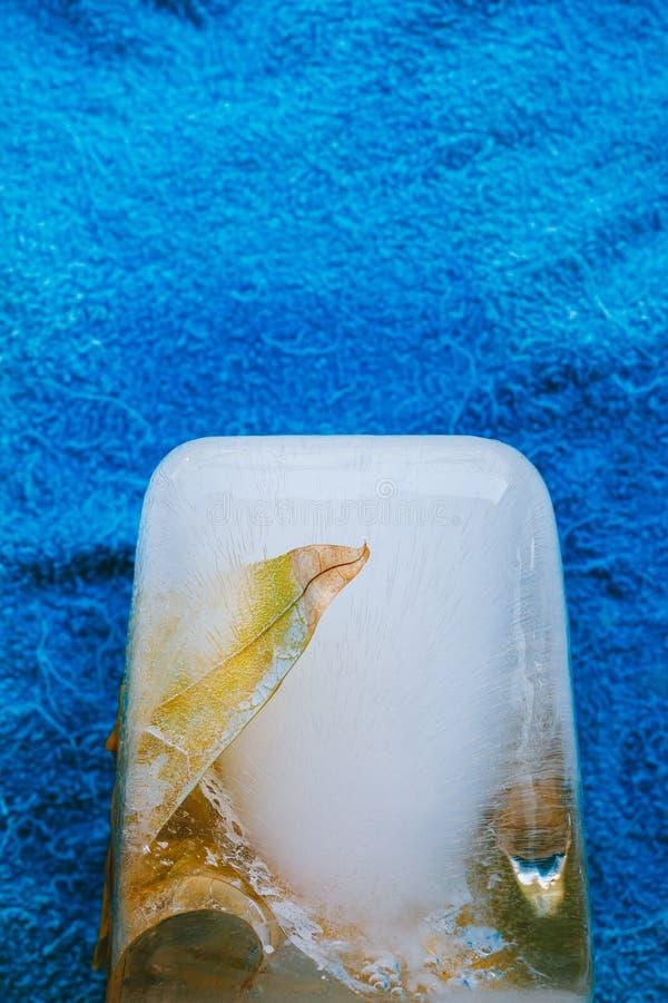 льдед стоковые фотографии rf