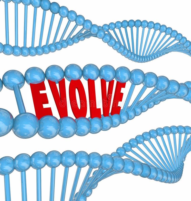 Эволюционируйте слова дна улучшите увеличьте получите лучший рост иллюстрация штока