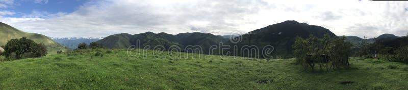 эквадор стоковая фотография