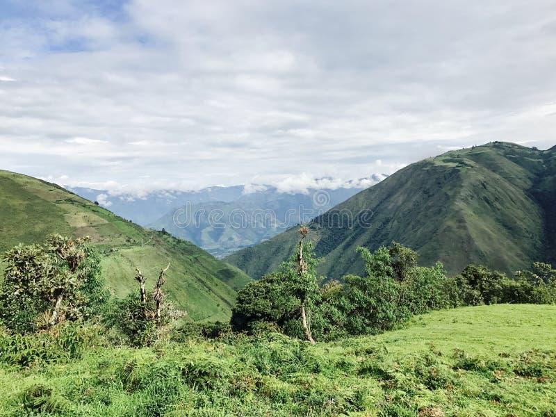 эквадор стоковое фото