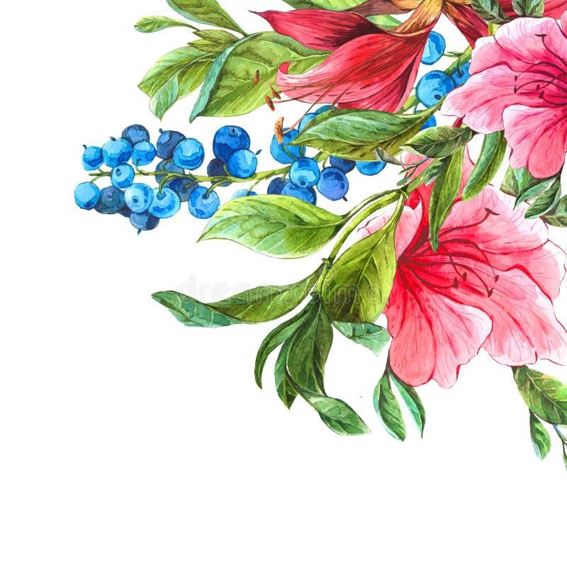 Экзотическая винтажная карточка с розовыми тропическими цветками иллюстрация вектора