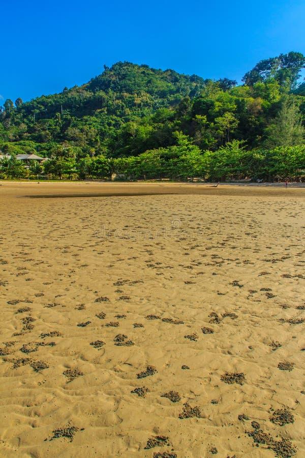 Экзотическая и красивая картина волны на песке в пляже позже стоковое изображение rf