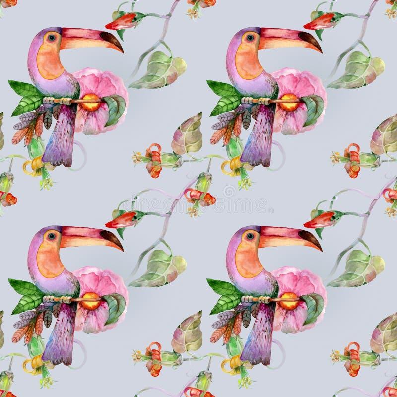 Экзотическая птица на мягкой голубой предпосылке бесплатная иллюстрация