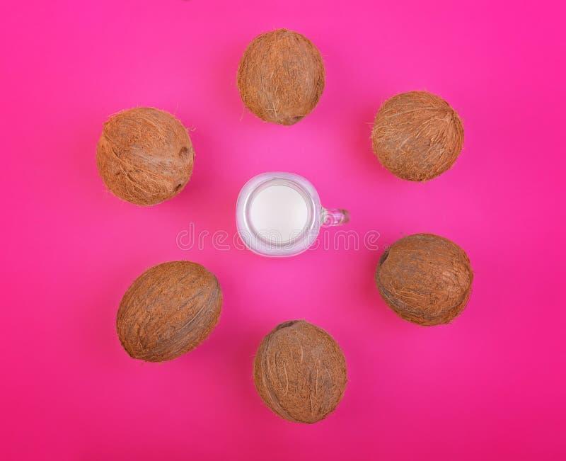 Экзотические тропические гайки с молоком кокоса на яркой розовой предпосылке, взгляд сверху Плодоовощ лета кокосов Питательная ди стоковое фото rf