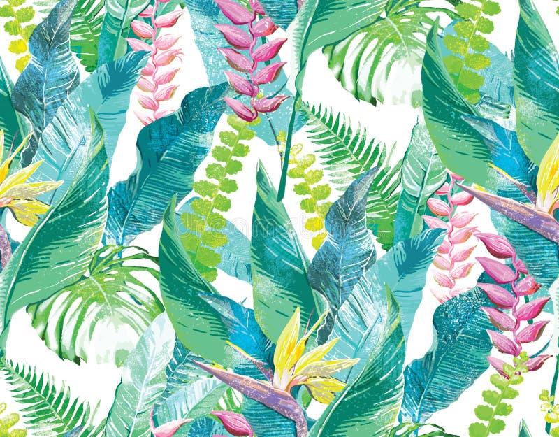 экзотические цветки иллюстрация штока