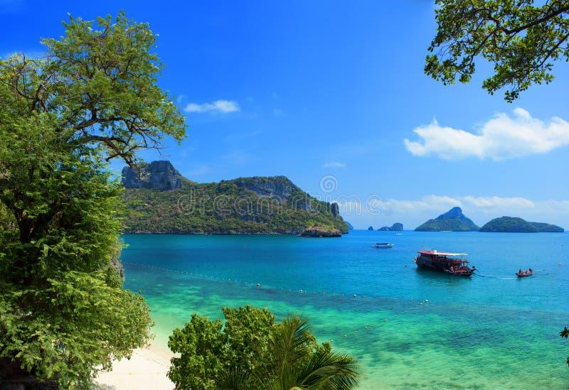 Экзотический красивый ландшафт Таиланда стоковые фото