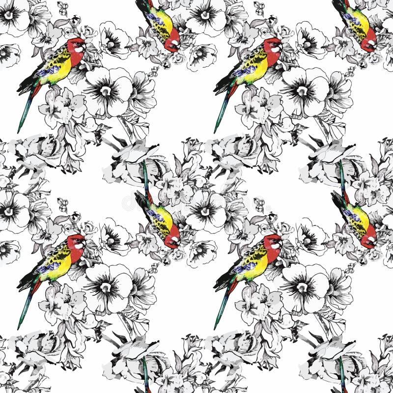 Экзотический попугай птиц с картиной цветков красочной безшовной изображение иллюстрации летания клюва декоративное своя бумажная иллюстрация вектора
