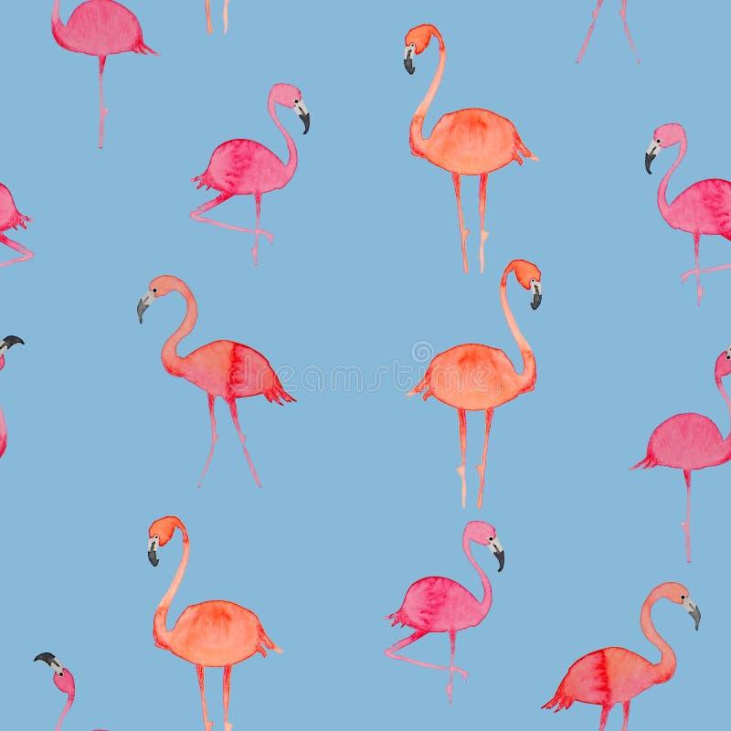 Экзотический состав фламинго тропических птиц розового Синь обоев картины пляжа джунглей безшовная выходит и цветет предпосылка иллюстрация штока