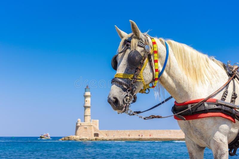 Экипажи и маяк лошади на старой гавани Chania, Крита стоковое фото