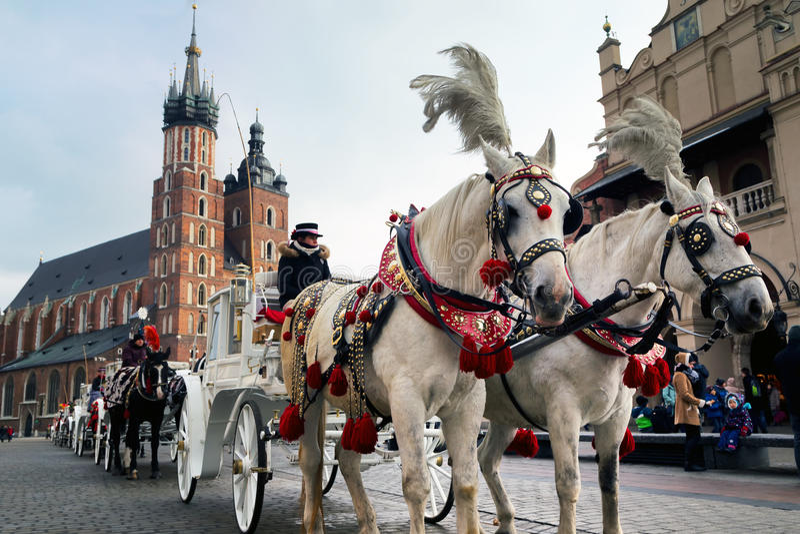 Экипажи лошади на главной площади в Кракове в зимнем дне стоковые изображения rf
