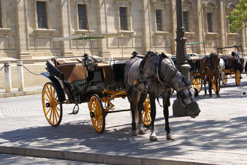 Экипажи лошади перед собором Севильи в Испании стоковые фотографии rf