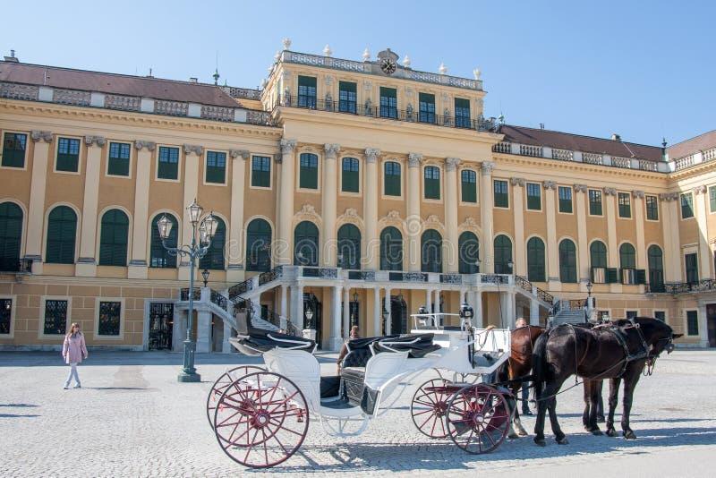 Экипаж нарисованный лошадью перед дворцом Schonbrunn, веной стоковые фото