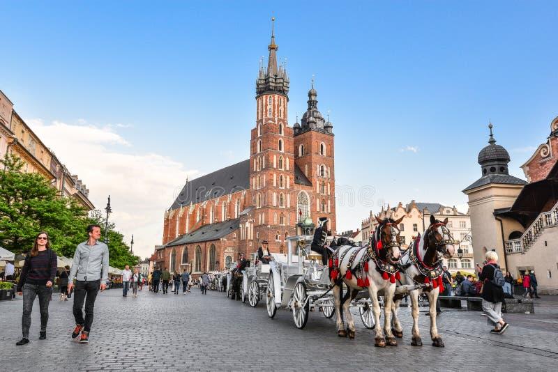 Экипаж на главной площади в Краков в летнем дне, Польша лошади 2 лошади в старомодном тренере перед St Mary Basilic стоковое изображение rf