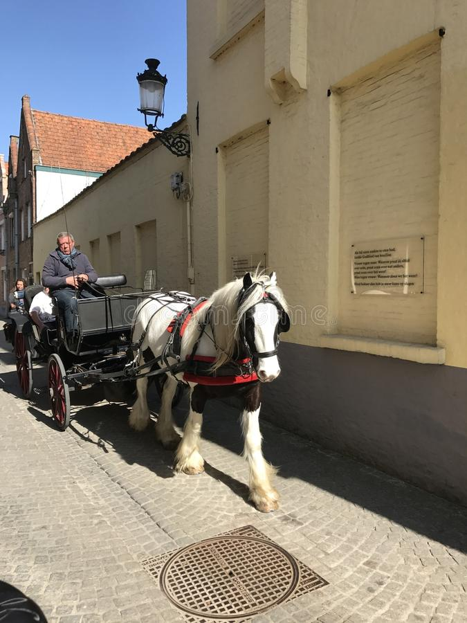 Экипаж на улице Brugge стоковая фотография rf