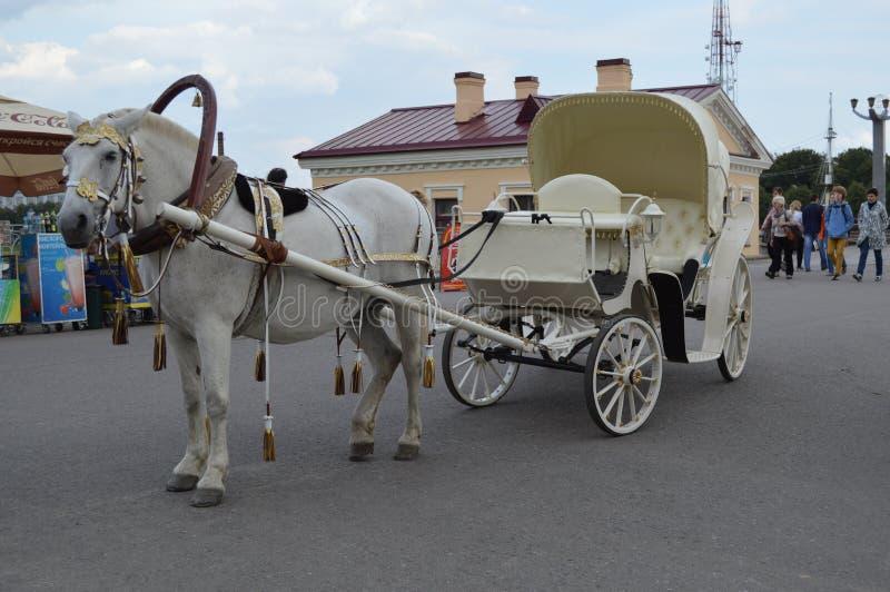 Экипаж лошади стоковые фото