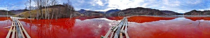 Экологическое бедствие. Панорама озера вполне с загрязняется стоковые фото