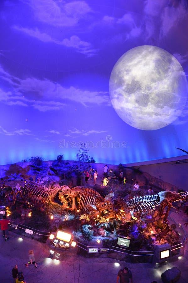 Экспонат динозавра на музее детей в Индианаполисе стоковые изображения rf