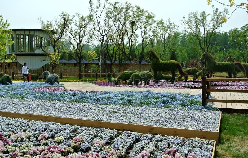 ЭКСПО 2019, китайский классический сад, китайские архитектуры, китайская культура, экспозиция 2019 Пекин международная садовничес стоковые фотографии rf