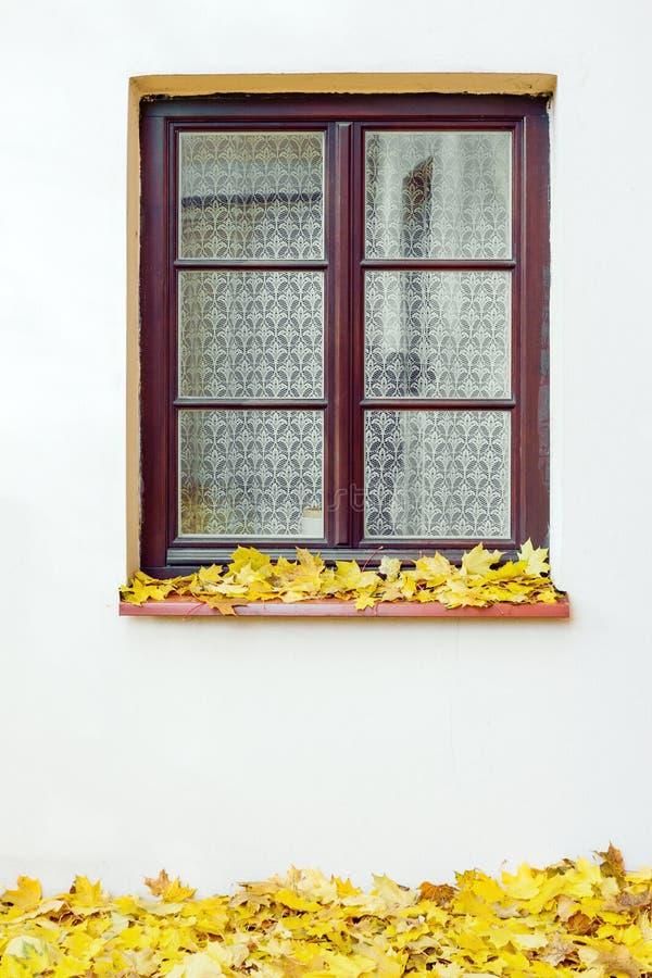 Экстерьер здания с закрытыми окном и кленовыми листами на осени стоковые фото