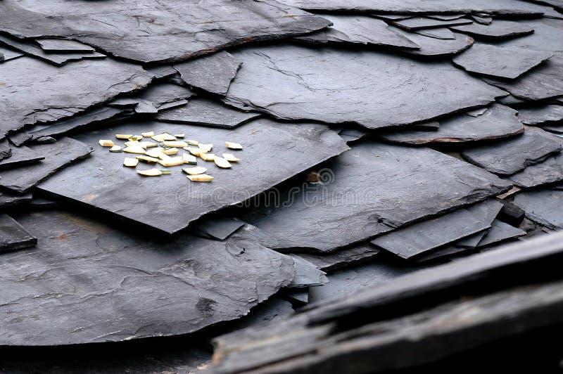 экстренныйый выпуск крыши стоковые изображения