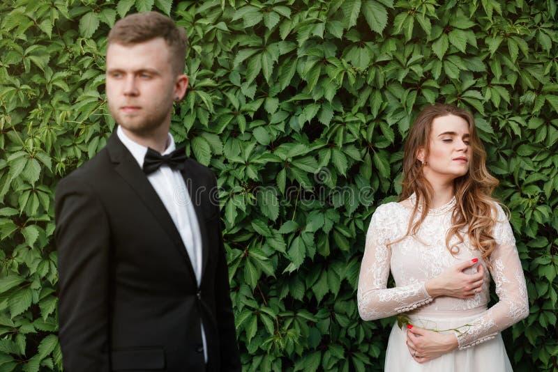Элегантная шикарная невеста и стильный groom представляя в парке стоковое фото rf