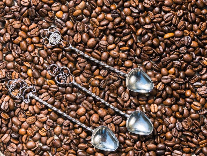 Элегантные старые ложки кофе на предпосылке зажаренных кофейных зерен стоковая фотография rf